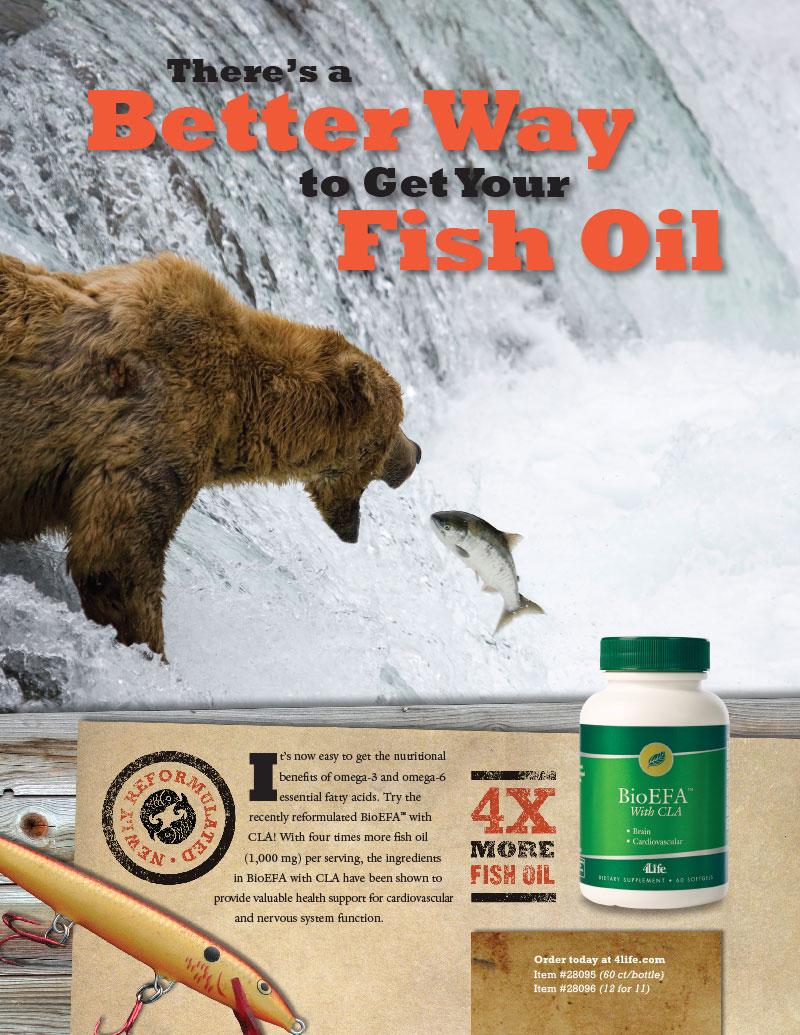 BioEFA_bear_ad